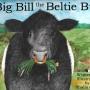 Big Bill-cover